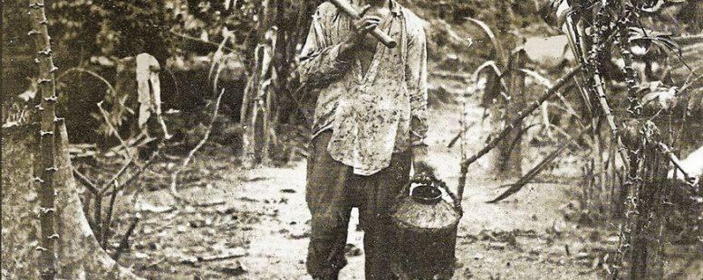 Pray of the Amazon prophet